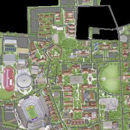 Louisiana State University Lsu